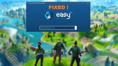 Fortnite – How to fix Easy Anti-Cheat Game 217 Error
